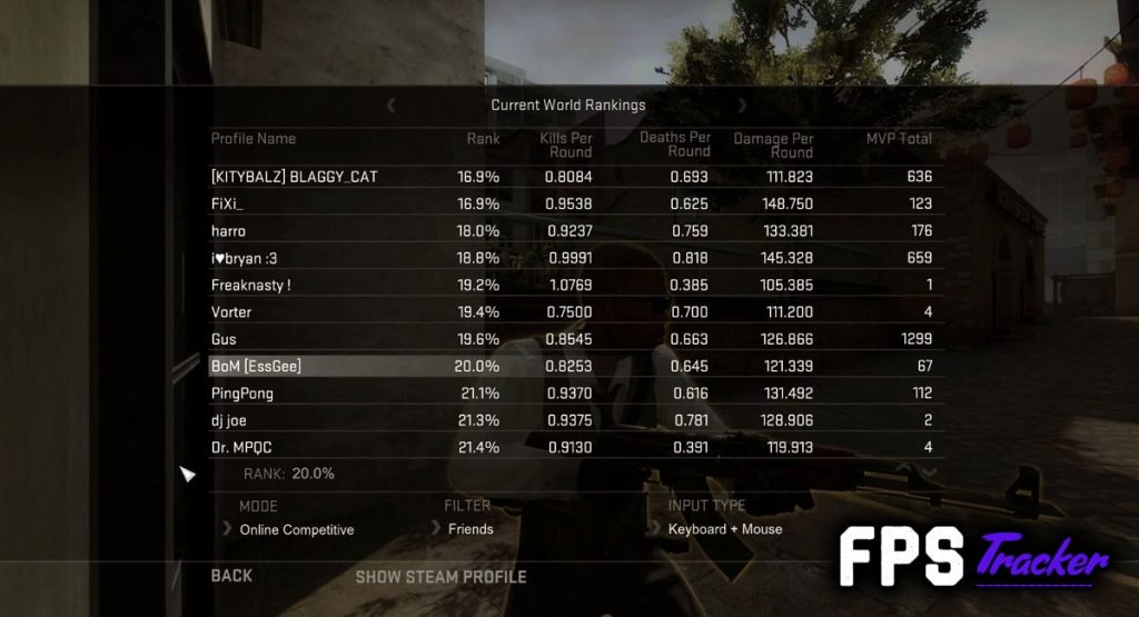 Counter Strike Global Offensive Leaderboard stats